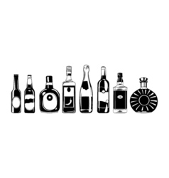 Alcohol bottles set design elements isolated on vector
