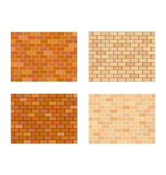 Collection of bricks different color on white vector image