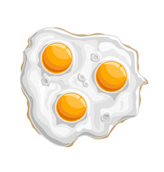 fried chicken eggs vector image vector image