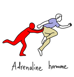 metaphor function of adrenaline hormone vector image