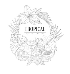 Topical fruits and plants logo hand drawn vector