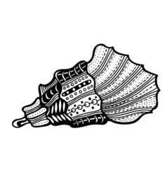 Hand drawn seashell vector