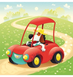 Funny dog on a car vector image