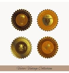 Icon 2 vector image vector image