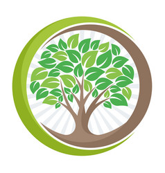 logo with tree concept vector image vector image