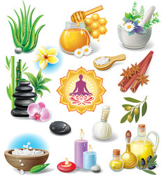 Set of spa treatment symbols vector image