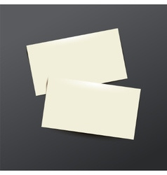 template white Business card vector image vector image