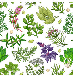 green pattern with herbs on white vector image