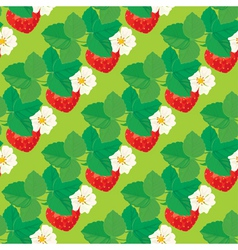 Strawberry seamless 4 380 vector