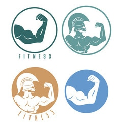 icons of fitness vector image
