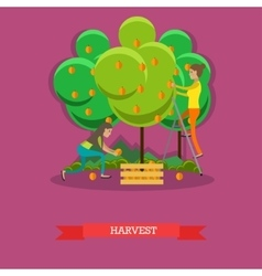Harvesting concept in flat vector image