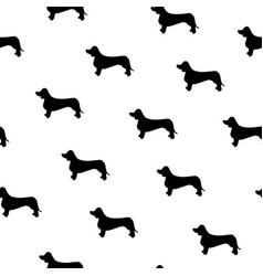 seamless pattern with cute dachshund silhouette vector image