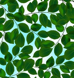 Green leaves canopy and sky in a seamless pattern vector