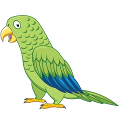 Cuta parrot cartoon isolated vector