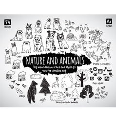 Big bundle animal and nature doodles icons objects vector image vector image