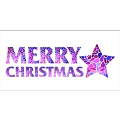 Iinscription merry christmas with christmas star vector