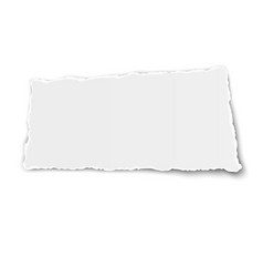 White paper tear with soft shadow isolated on vector