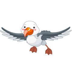 albatross vector image vector image