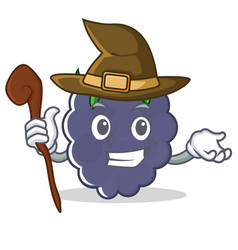 Witch blackberry character cartoon style vector
