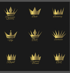golden crown set vector image