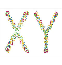 Chromosomes x y on a white background vector
