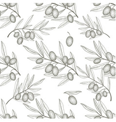 olives seamless pattern engraving olive branch vector image vector image