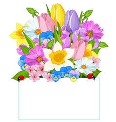 Colorful fresh spring flowers vector
