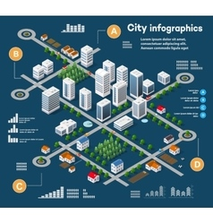 3D city isometric vector image