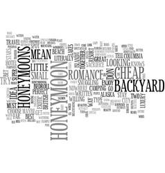 backyard honeymoons text word cloud concept vector image vector image
