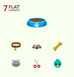 icon flat pets set of bird bone kitty food and vector image