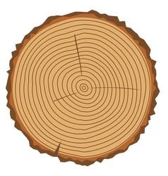 Wood vector