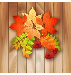 Autumn background with leaves on a wood texture vector image