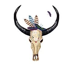 Bull Skull Butterflies vector image