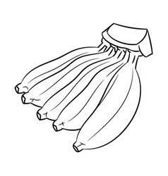 Line Drawing Of Banana Simple Vector Image