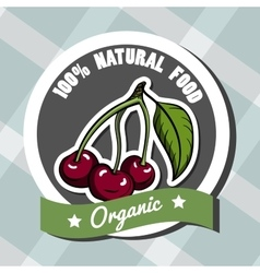 Natural Food 5 vector image vector image