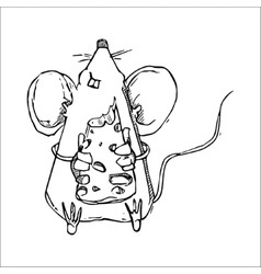 Cute Doodle Mouse vector image