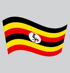 Flag of uganda waving on gray background vector