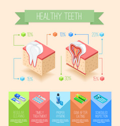 Oral care infographic poster vector