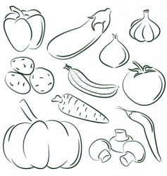 Vegetable doodles vector