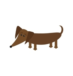 Dachshund dog breed with tongue cute cartoon vector