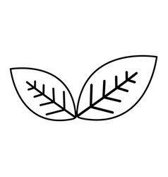 Figure leaves environment care icon vector