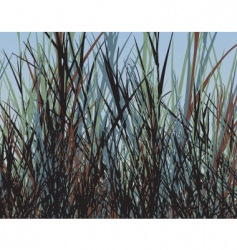 grass jungle vector image vector image
