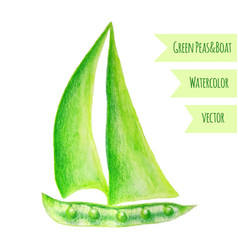Pea ship watercolor green peas hand drawn vector