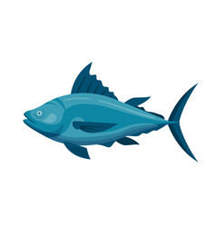 sea tuna fish vector image