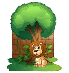 A lion under a big old tree vector image vector image