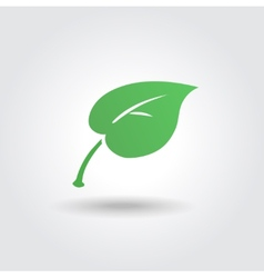 Eco icon with green leaf bio sign vector image