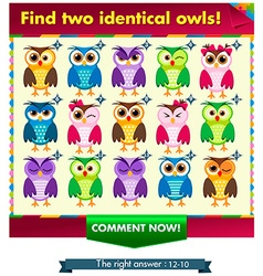 fiind two identical owls vector image