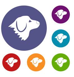 Retriever dog icons set vector