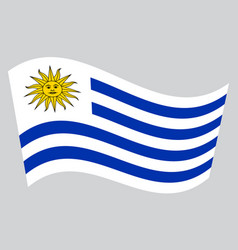 Flag of uruguay waving on gray background vector