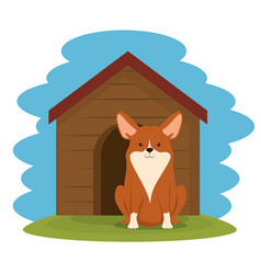 Dog in wooden house pet friendly vector